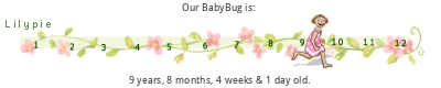 BabyBug's Birthday